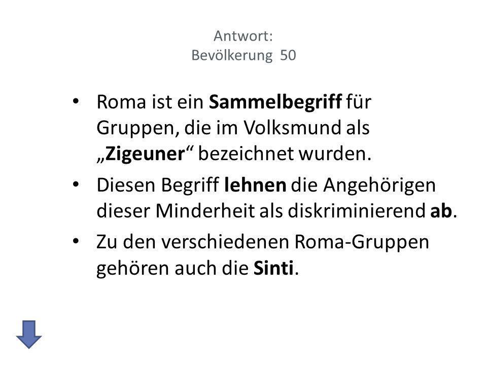 Zu den verschiedenen Roma-Gruppen gehören auch die Sinti.