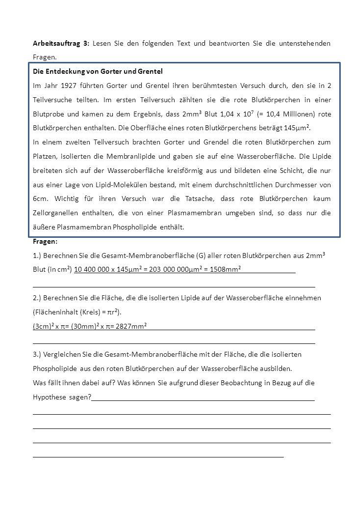 Arbeitsauftrag 3: Lesen Sie den folgenden Text und beantworten Sie die untenstehenden Fragen.
