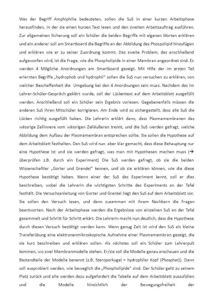 Was der Begriff Amphiphilie bedeuteten, sollen die SuS in einer kurzen Arbeitsphase herausfinden, in der sie einen kurzen Text lesen und den zweiten Arbeitsauftrag ausführen.