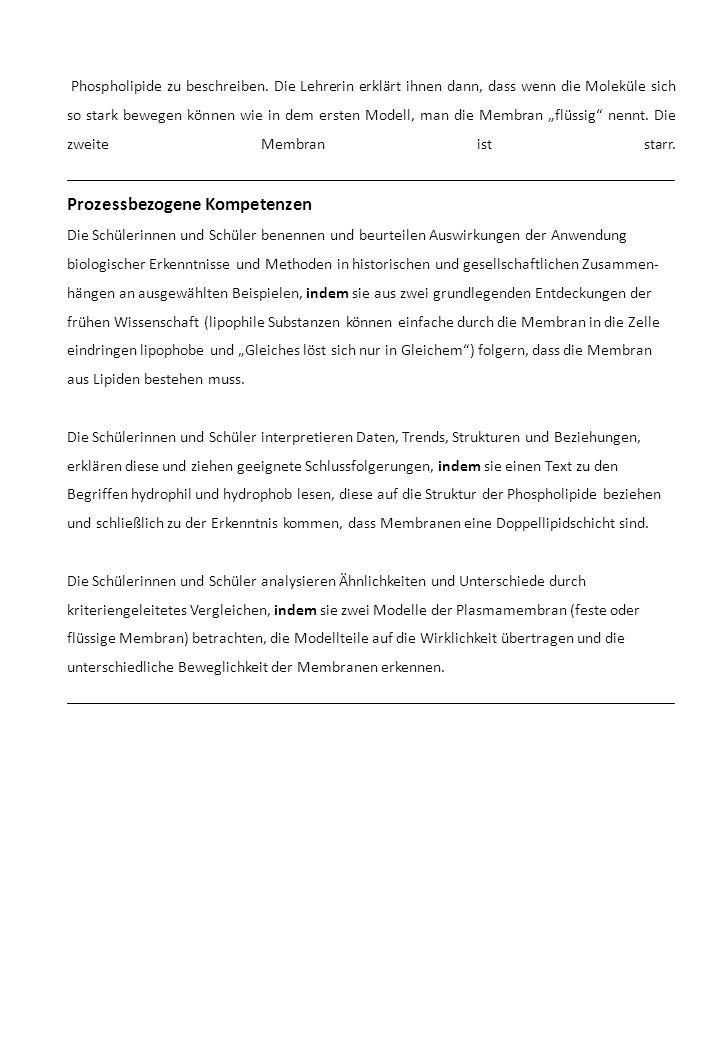 Phospholipide zu beschreiben