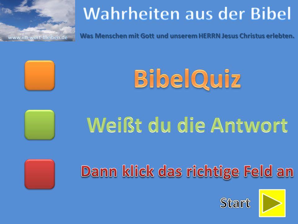 BibelQuiz Weißt du die Antwort Wahrheiten aus der Bibel