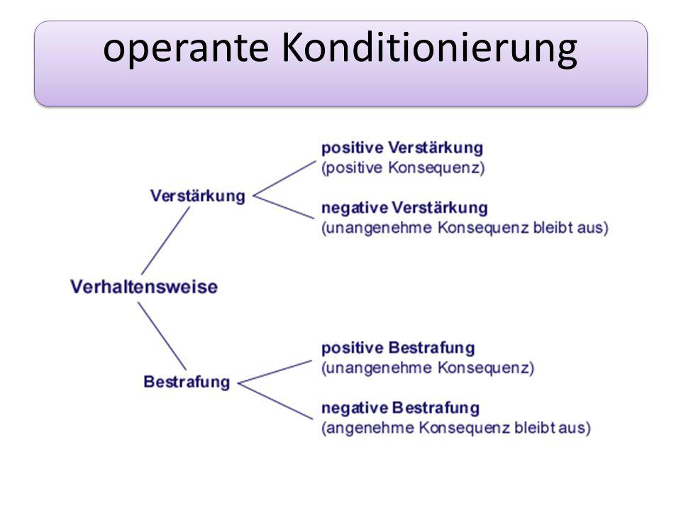 operante Konditionierung