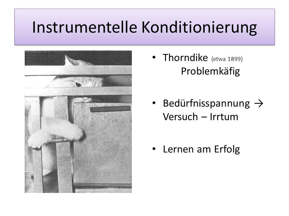 Instrumentelle Konditionierung