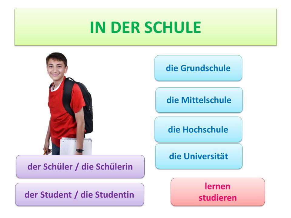 der Schüler / die Schülerin der Student / die Studentin