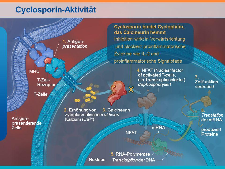 Cyclosporin-Aktivität