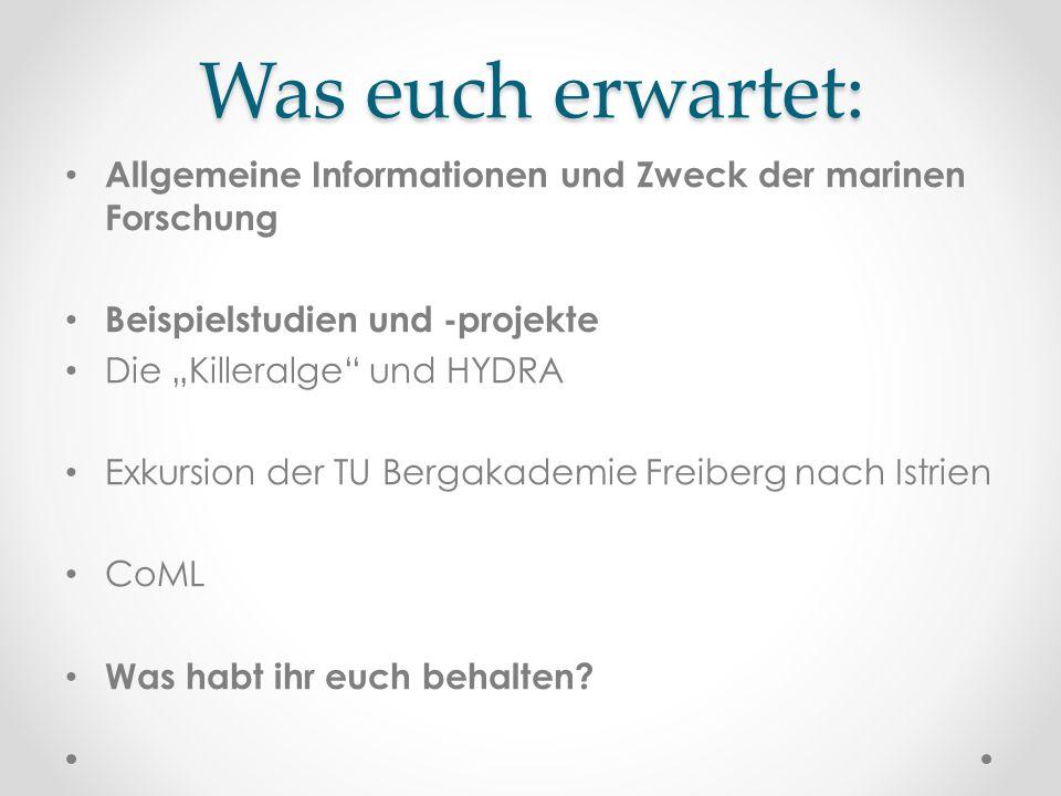 Was euch erwartet: Allgemeine Informationen und Zweck der marinen Forschung. Beispielstudien und -projekte.