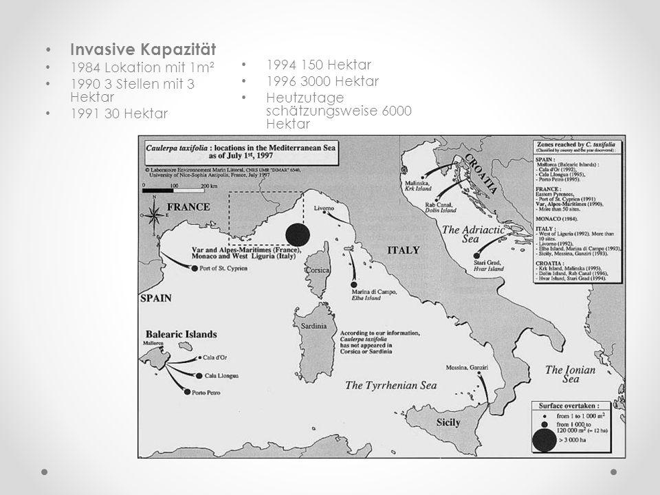 Invasive Kapazität 1984 Lokation mit 1m² 1994 150 Hektar