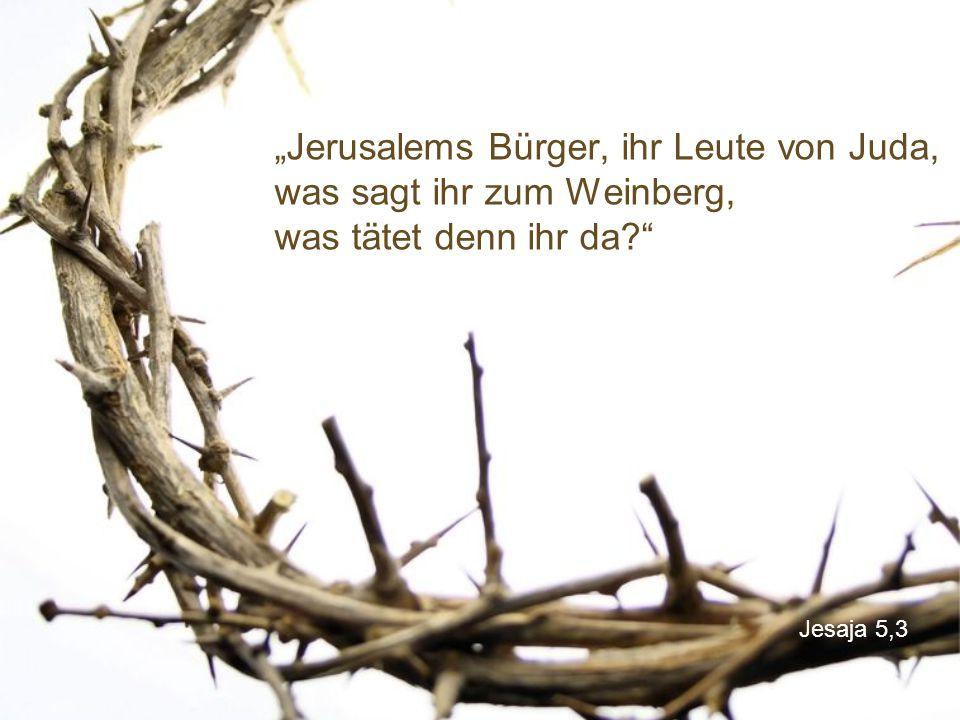 """""""Jerusalems Bürger, ihr Leute von Juda, was sagt ihr zum Weinberg, was tätet denn ihr da"""