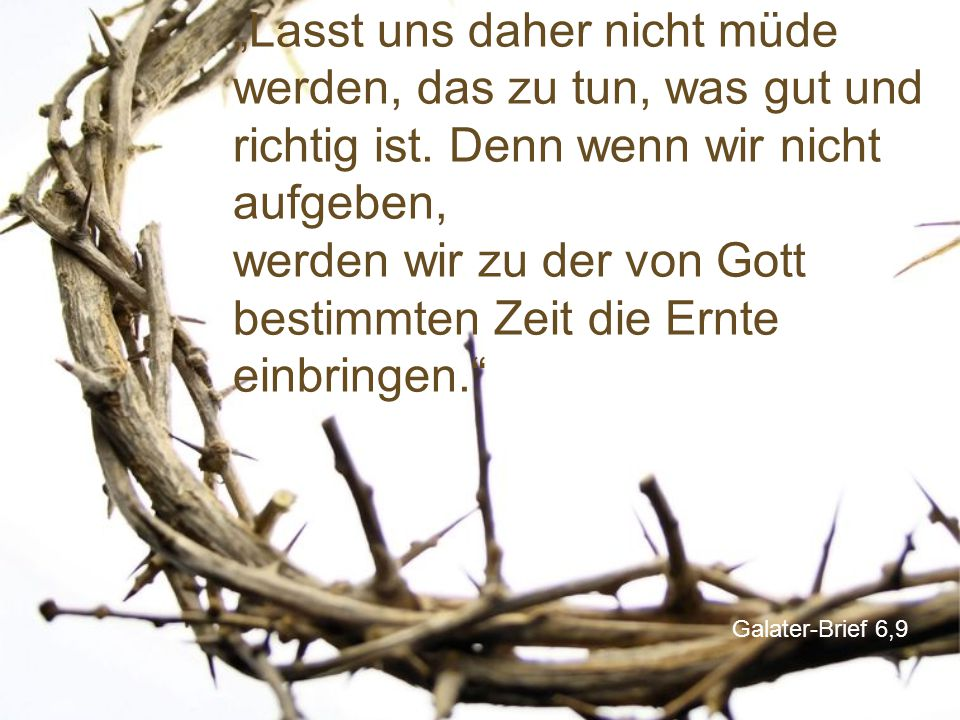 """""""Lasst uns daher nicht müde werden, das zu tun, was gut und richtig ist. Denn wenn wir nicht aufgeben, werden wir zu der von Gott bestimmten Zeit die Ernte einbringen."""