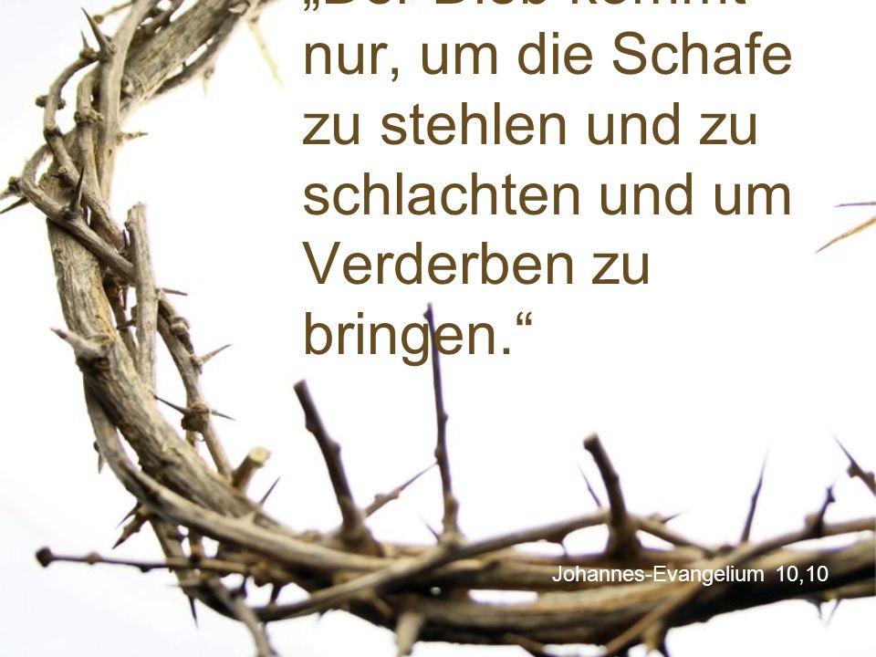 """""""Der Dieb kommt nur, um die Schafe zu stehlen und zu schlachten und um Verderben zu bringen."""