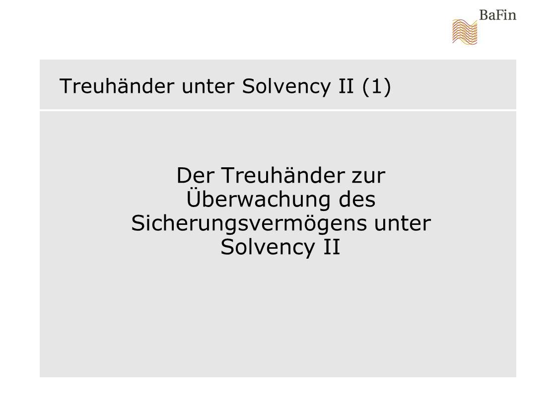 Treuhänder unter Solvency II (1)