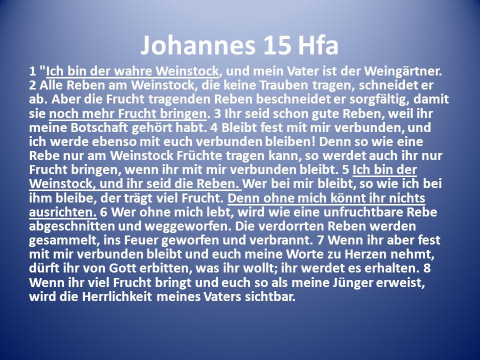 Johannes 15 Hfa