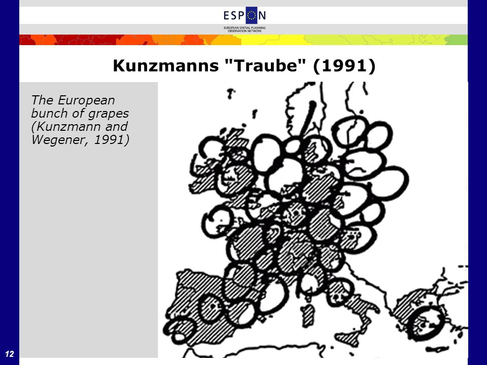 Kunzmanns Traube (1991) The European bunch of grapes (Kunzmann and