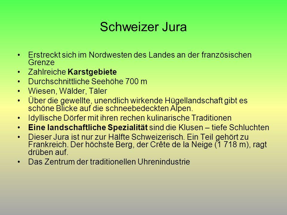 Schweizer Jura Erstreckt sich im Nordwesten des Landes an der französischen Grenze. Zahlreiche Karstgebiete.