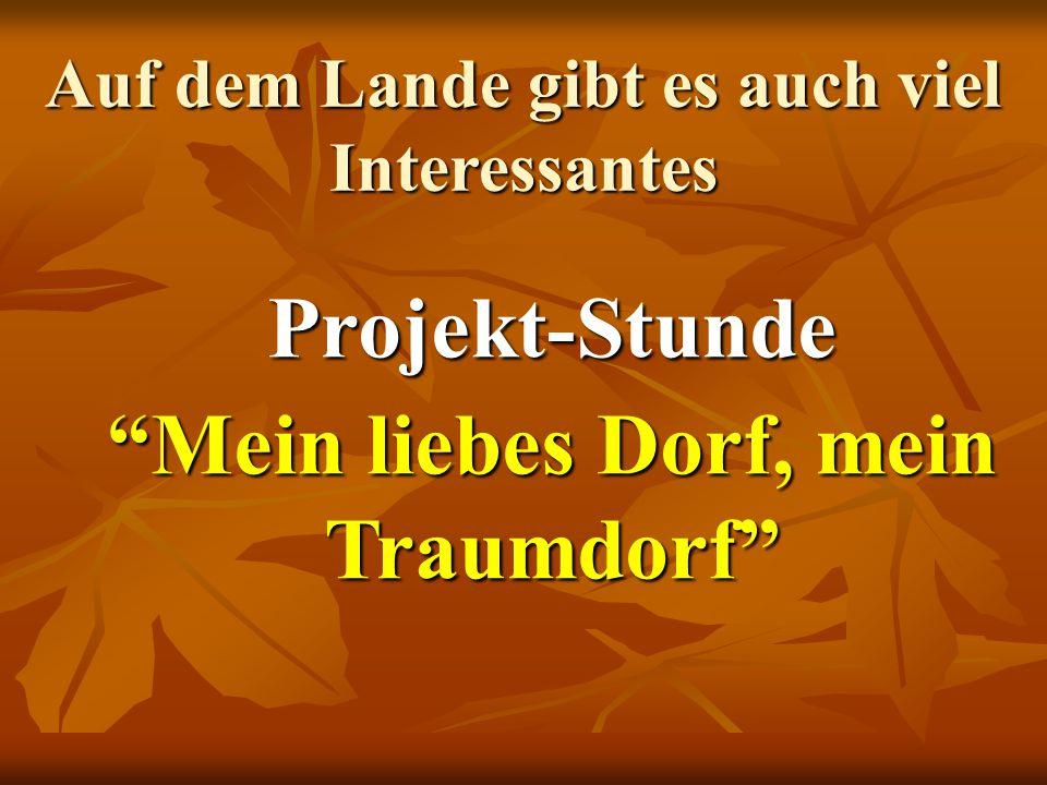 Projekt-Stunde Mein liebes Dorf, mein Traumdorf