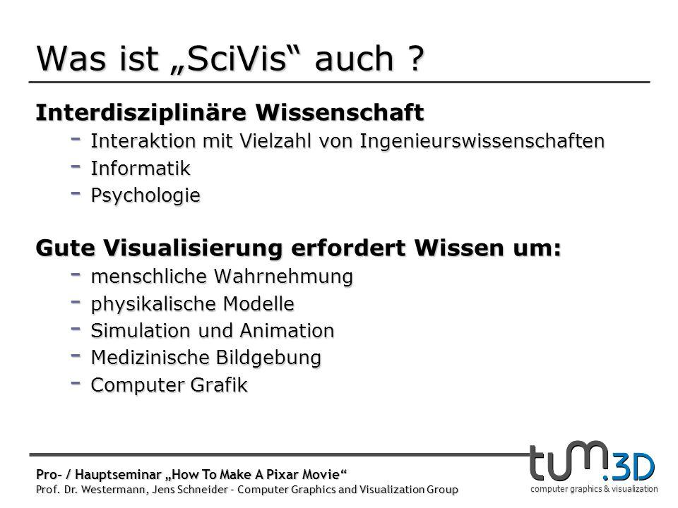 """Wozu Seminar """"SciVis Schein! Wissenschaftliches Arbeiten"""