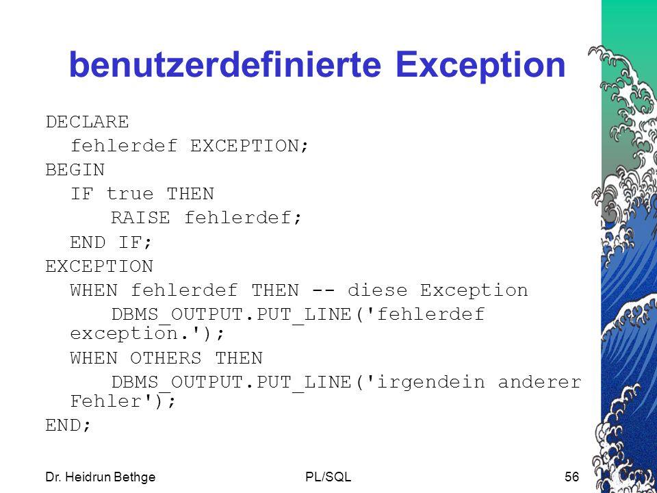 benutzerdefinierte Exception