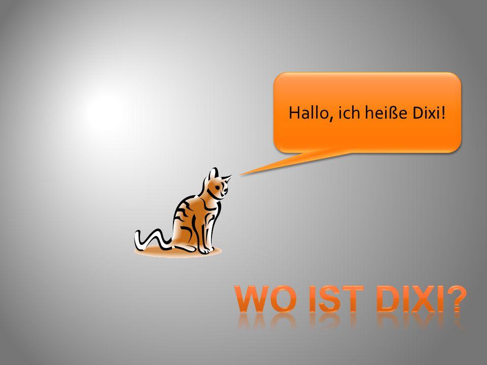 Hallo, ich heiße Dixi! WO IST DIXI