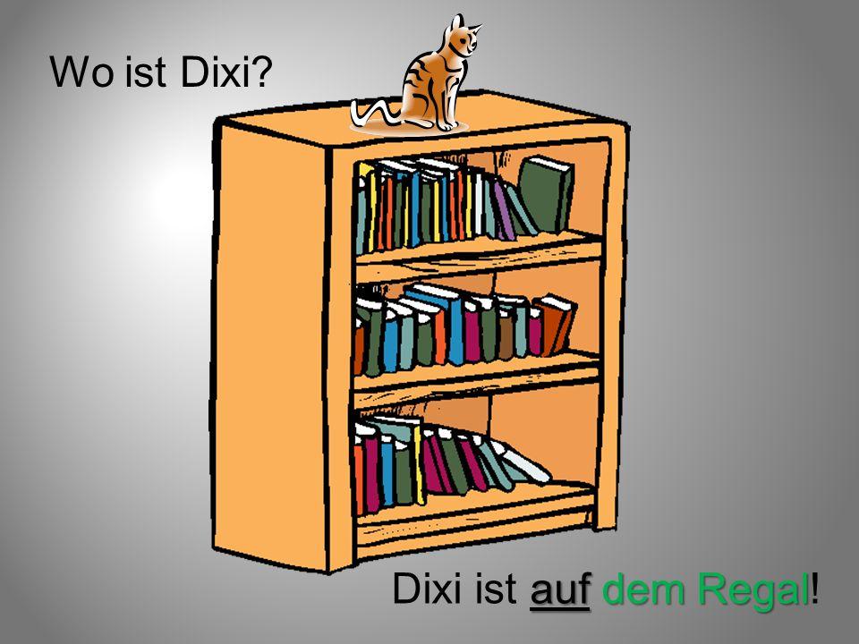 Wo ist Dixi Dixi ist auf dem Regal!