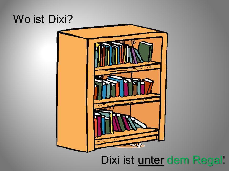 Wo ist Dixi Dixi ist unter dem Regal!