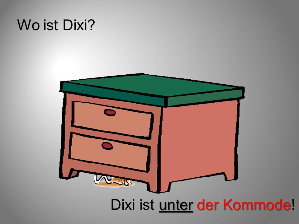Wo ist Dixi Dixi ist unter der Kommode!