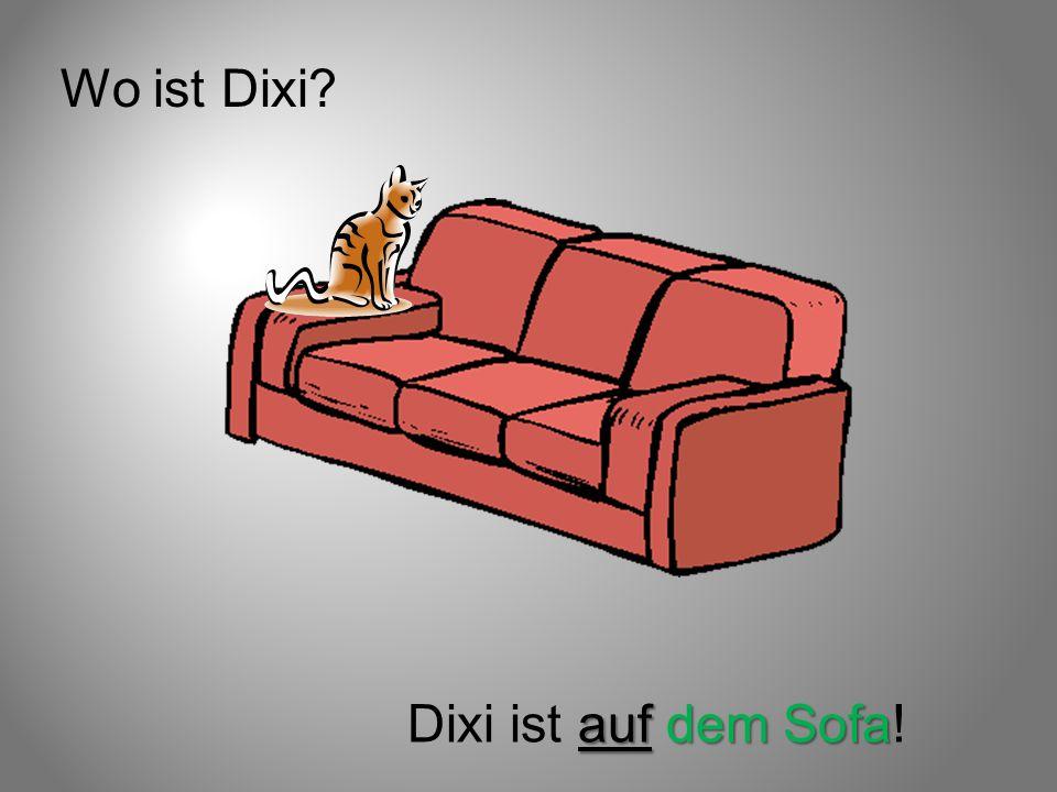 Wo ist Dixi Dixi ist auf dem Sofa!