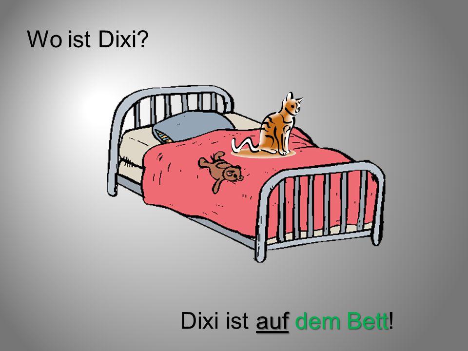 Wo ist Dixi Dixi ist auf dem Bett!