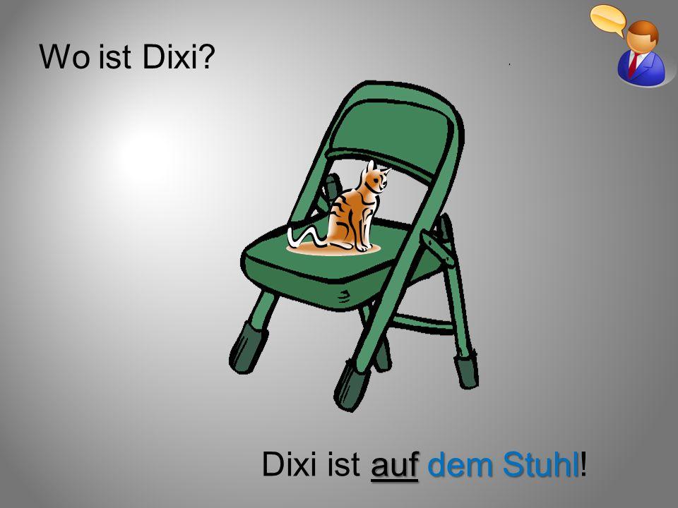 Wo ist Dixi Dixi ist auf dem Stuhl!