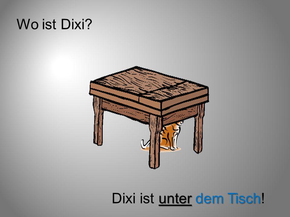 Wo ist Dixi Dixi ist unter dem Tisch!