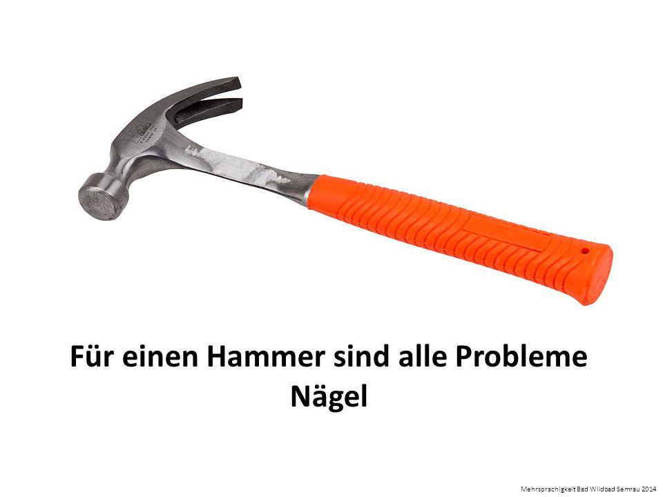 Für einen Hammer sind alle Probleme Nägel