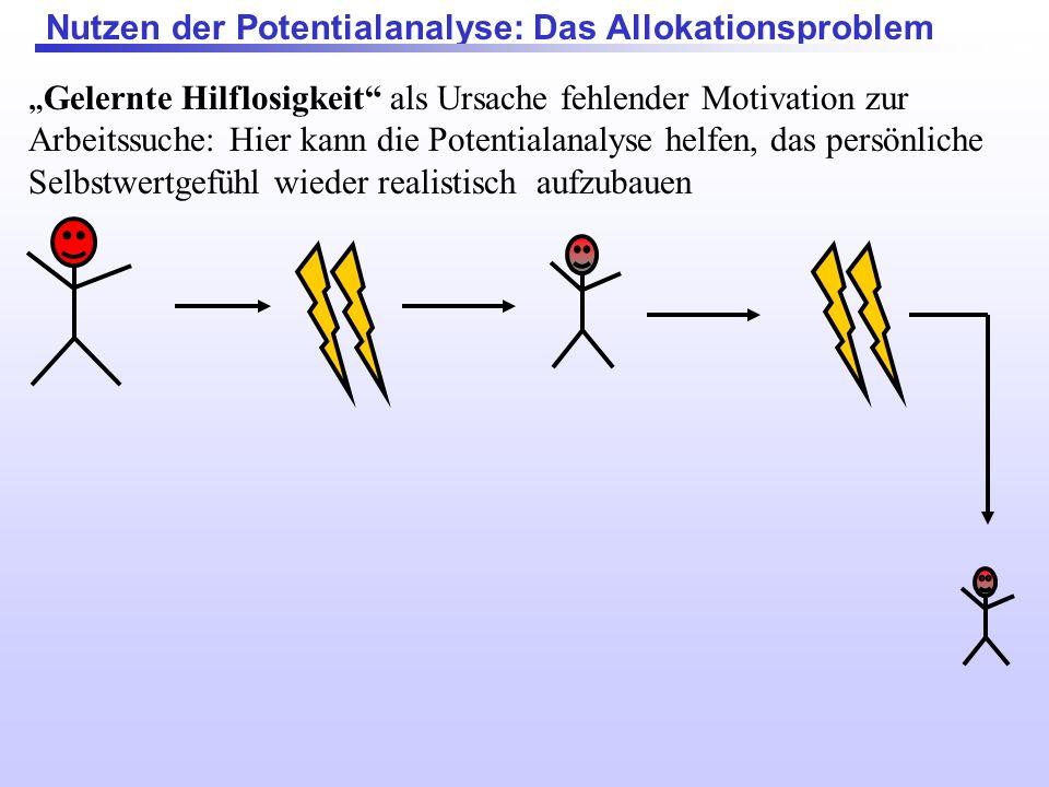 Nutzen der Potentialanalyse: Das Allokationsproblem