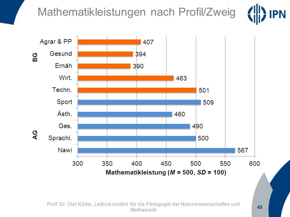 Mathematikleistungen nach Profil/Zweig