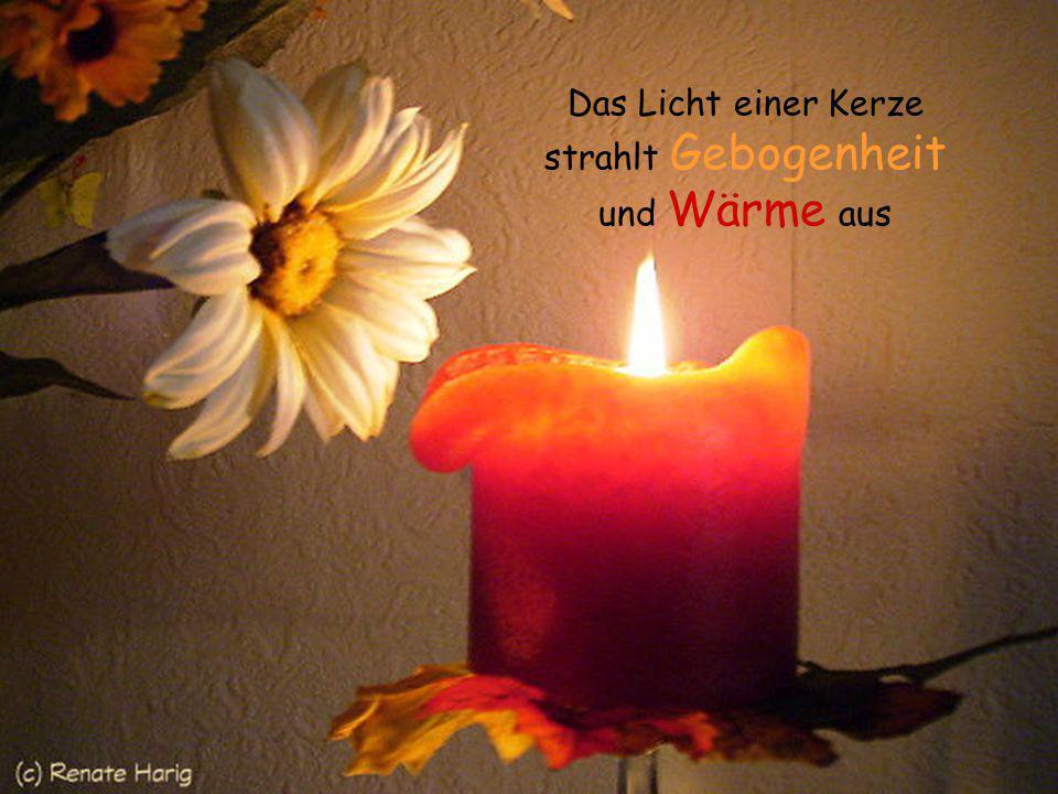 Das Licht einer Kerze strahlt Gebogenheit und Wärme aus