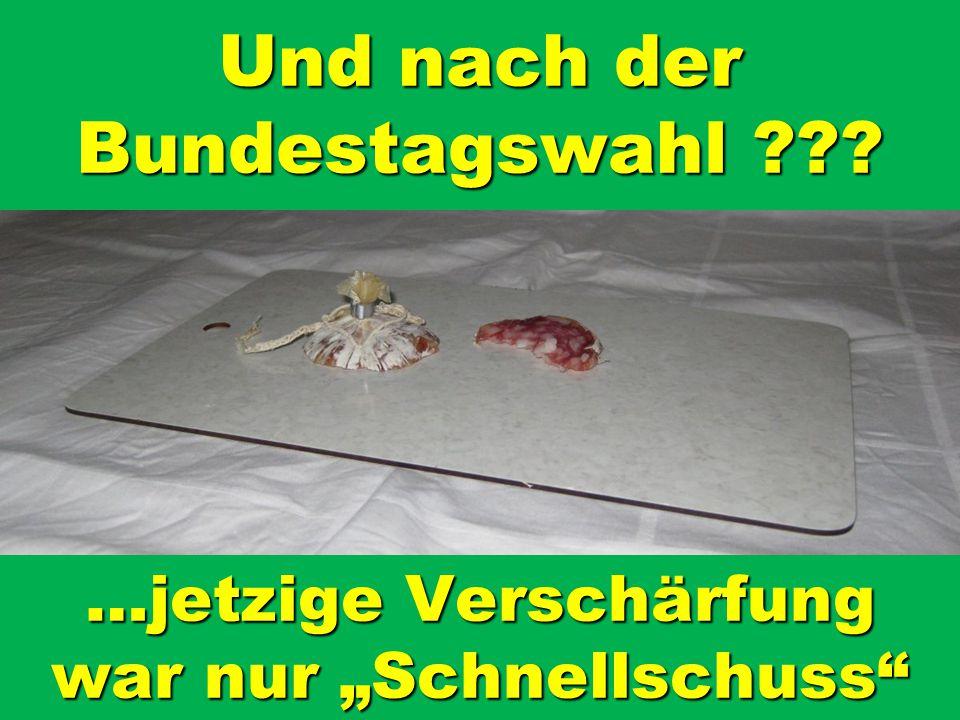 Und nach der Bundestagswahl