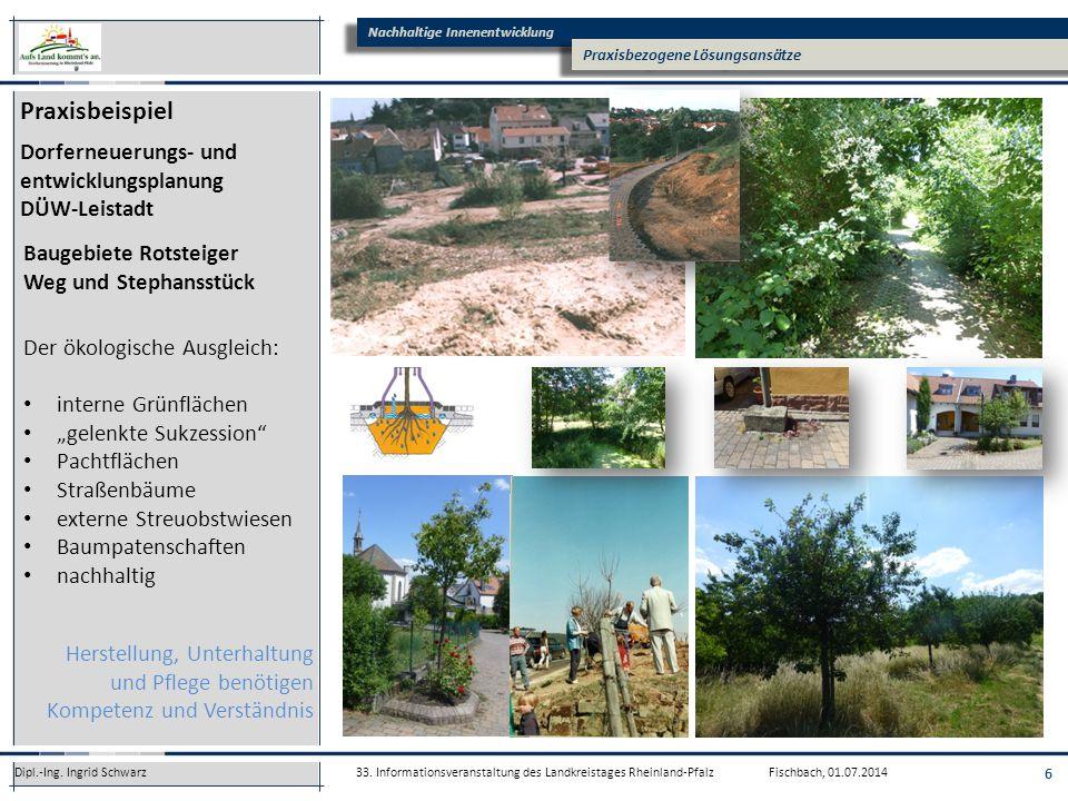 Praxisbeispiel Dorferneuerungs- und entwicklungsplanung DÜW-Leistadt