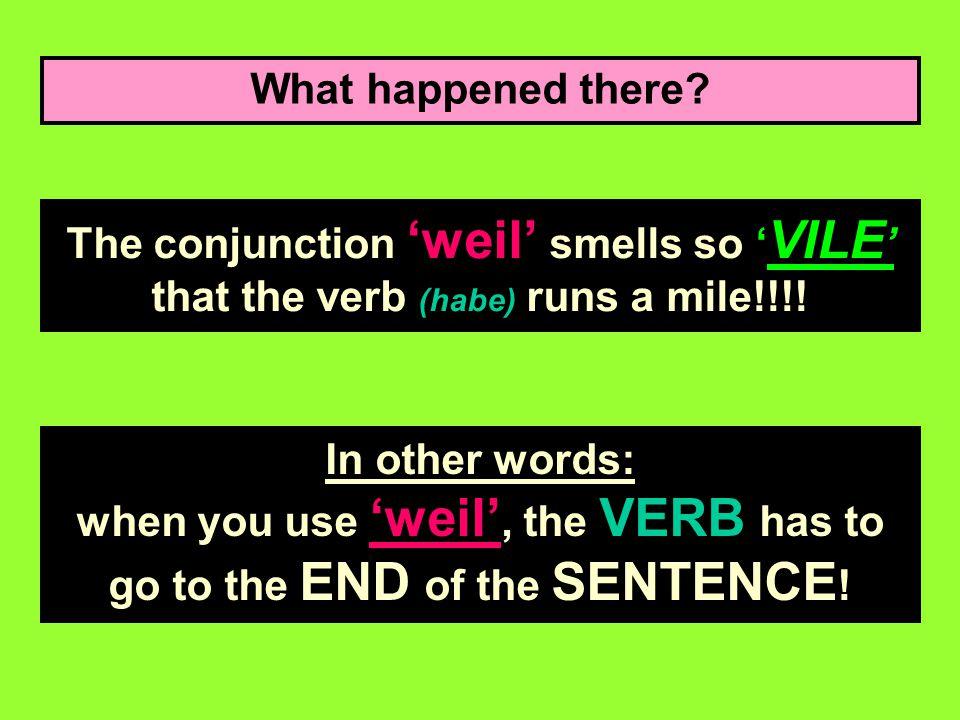 What happened there The conjunction 'weil' smells so 'VILE' that the verb (habe) runs a mile!!!!