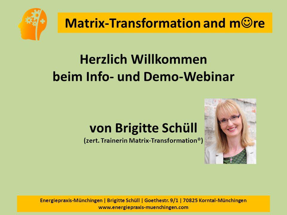 Herzlich Willkommen beim Info- und Demo-Webinar von Brigitte Schüll (zert.