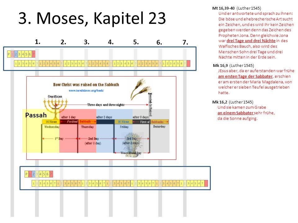 3. Moses, Kapitel 23