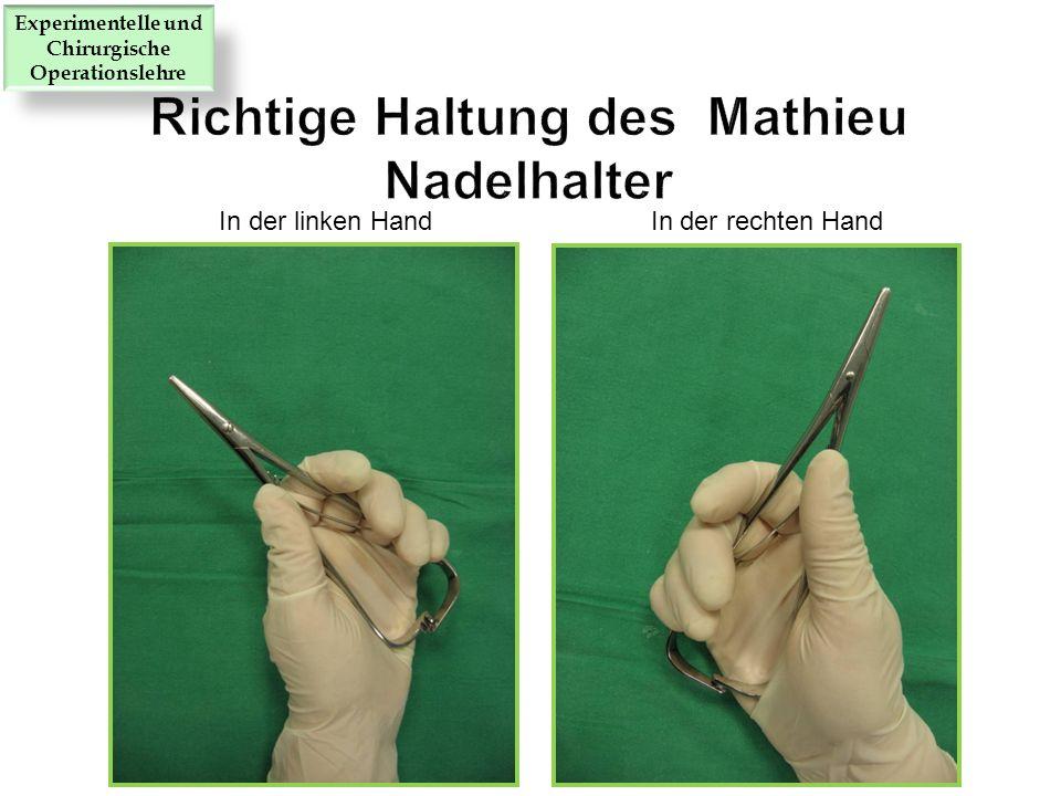 Richtige Haltung des Mathieu Nadelhalter