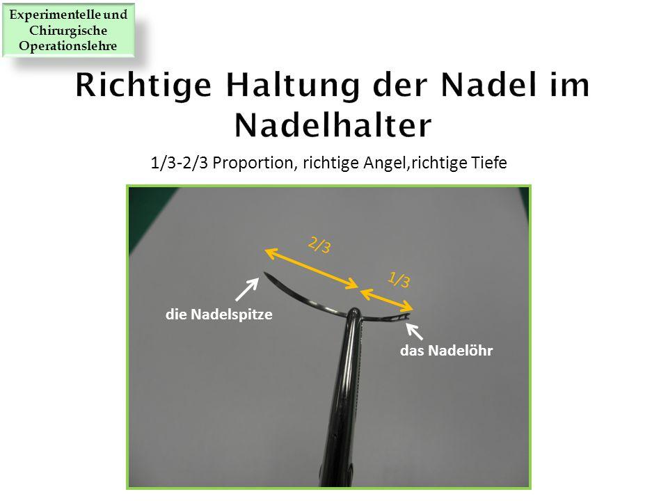 Richtige Haltung der Nadel im Nadelhalter