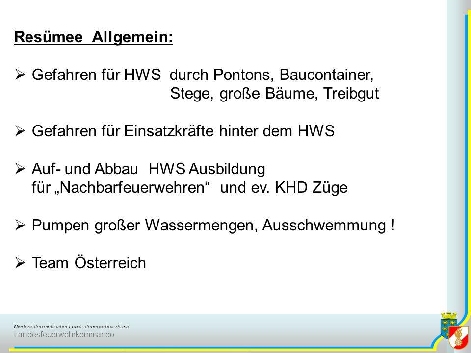 Resümee Allgemein: Gefahren für HWS durch Pontons, Baucontainer, Stege, große Bäume, Treibgut. Gefahren für Einsatzkräfte hinter dem HWS.