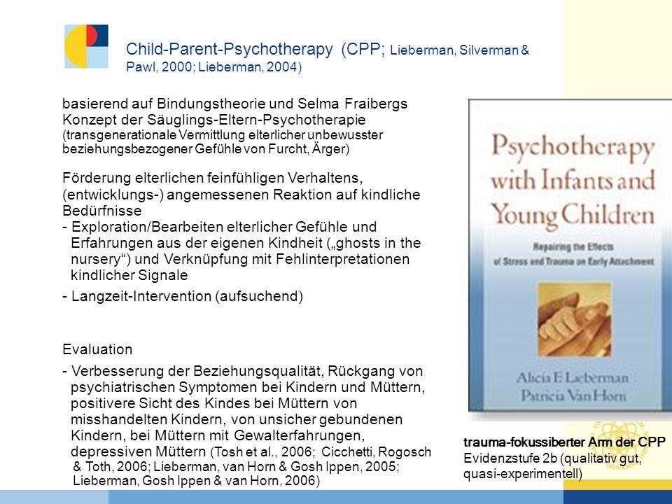 Child-Parent-Psychotherapy (CPP; Lieberman, Silverman & Pawl, 2000; Lieberman, 2004)
