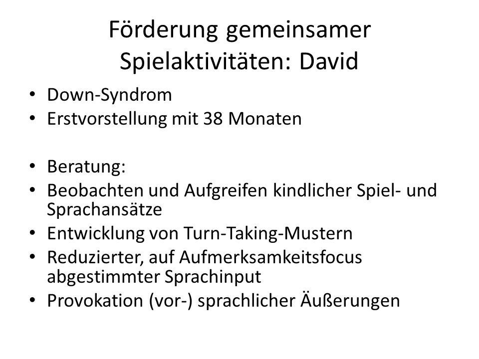 Förderung gemeinsamer Spielaktivitäten: David