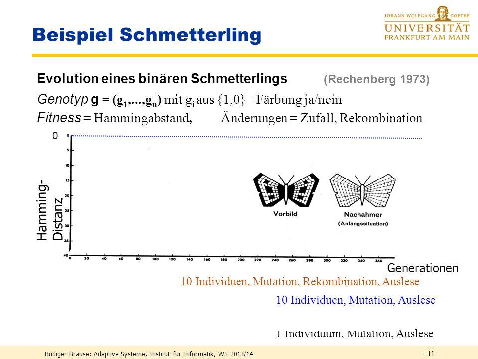 Beispiel Schmetterling