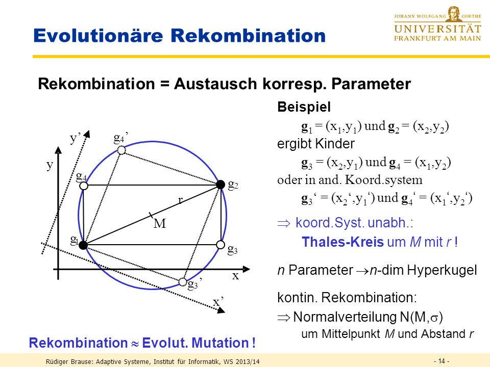 Evolutionäre Rekombination