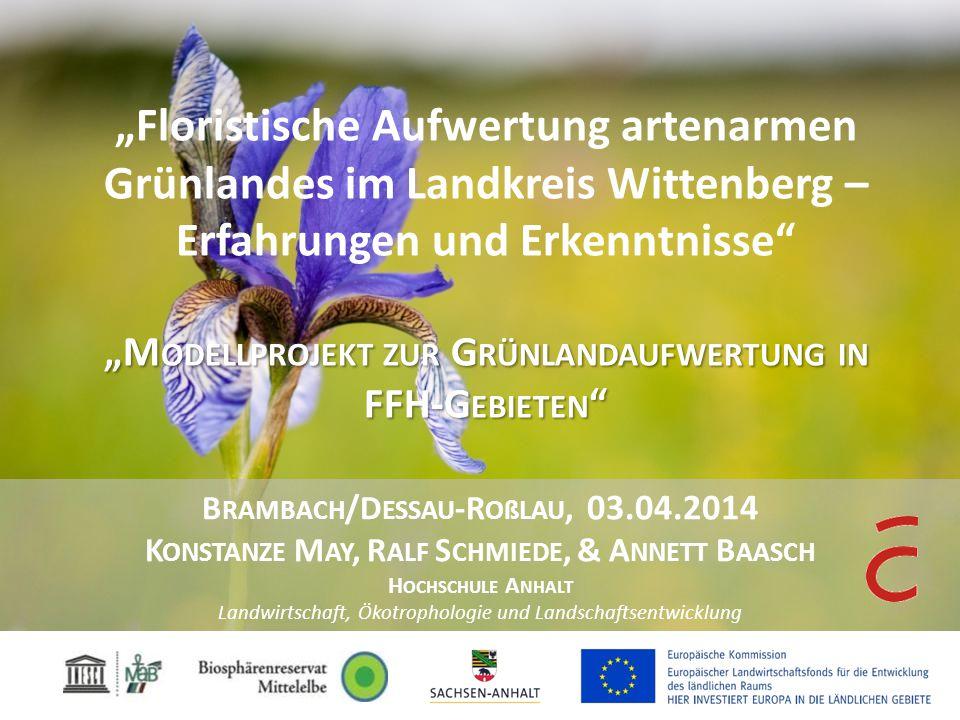 """""""Floristische Aufwertung artenarmen Grünlandes im Landkreis Wittenberg – Erfahrungen und Erkenntnisse """"Modellprojekt zur Grünlandaufwertung in FFH-Gebieten"""