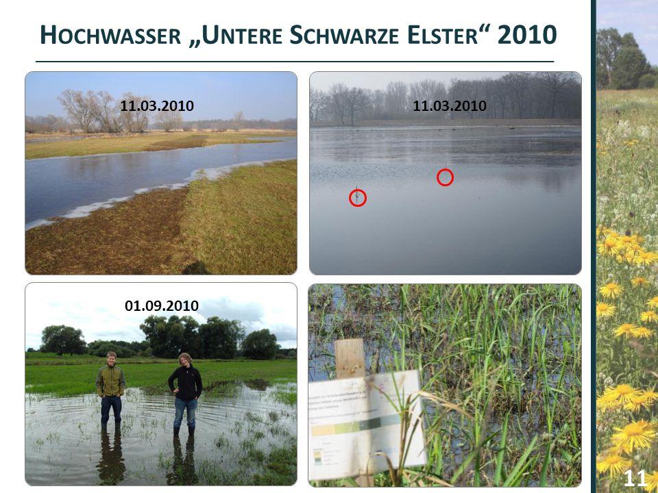"""Hochwasser """"Untere Schwarze Elster 2010"""