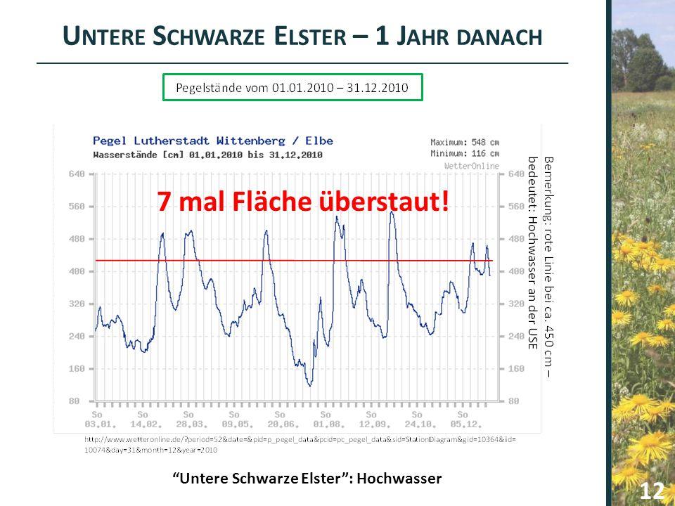 Untere Schwarze Elster – 1 Jahr danach 7 mal Fläche überstaut!