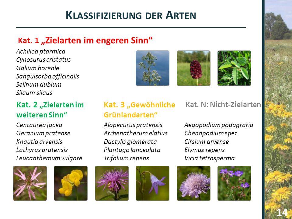Klassifizierung der Arten