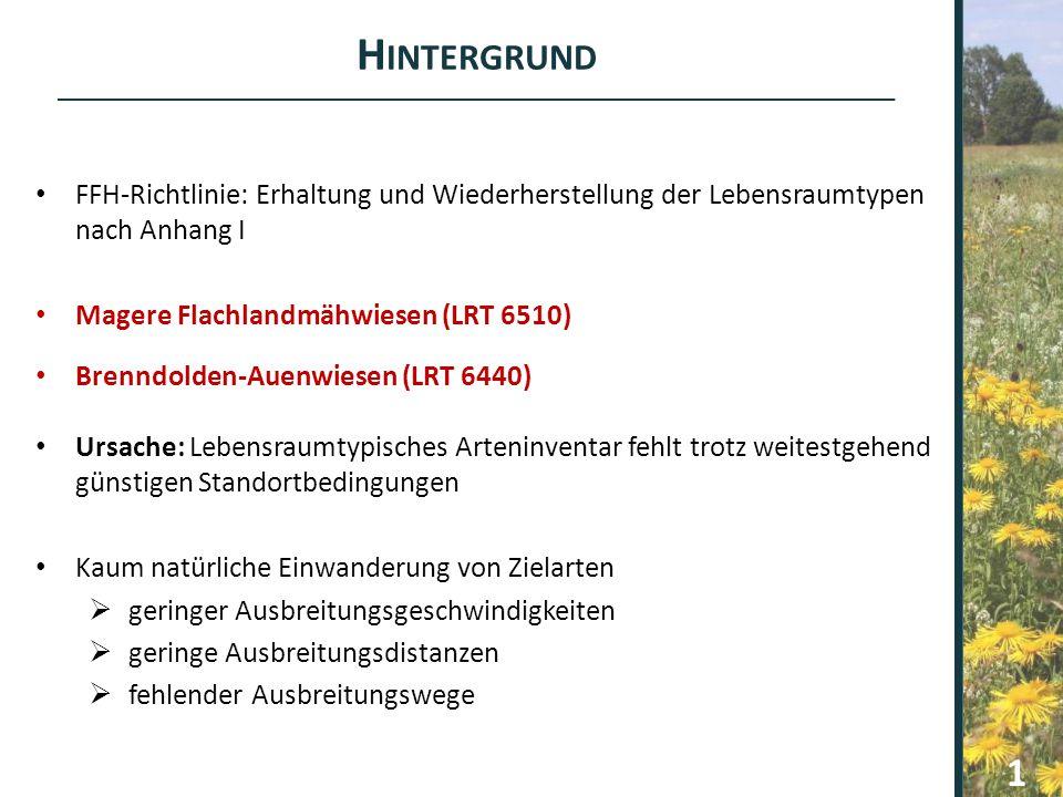 Hintergrund FFH-Richtlinie: Erhaltung und Wiederherstellung der Lebensraumtypen nach Anhang I. Magere Flachlandmähwiesen (LRT 6510)